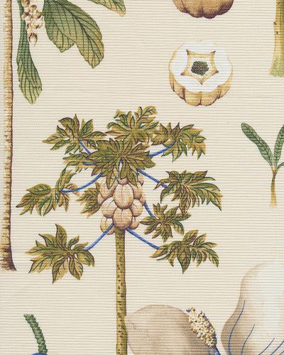 Catesby Palms