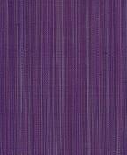 darjeeling-africanviolet.jpg