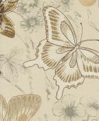 papillon-driftwood.jpg