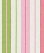 Penny Stripe